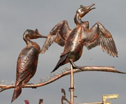 Two Shags Weathervane